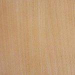 071 beech oak