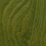 Zielona Bejca